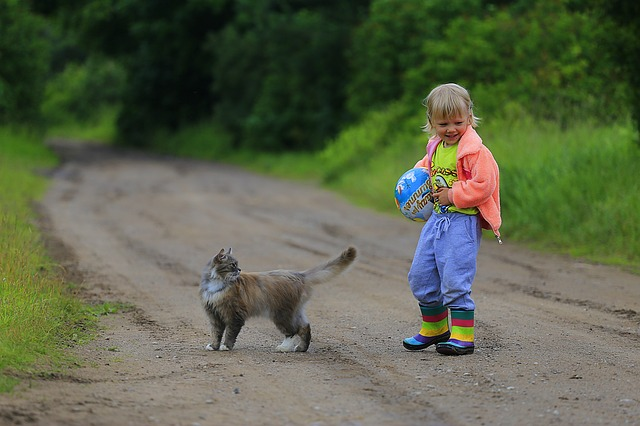 holka u kočky
