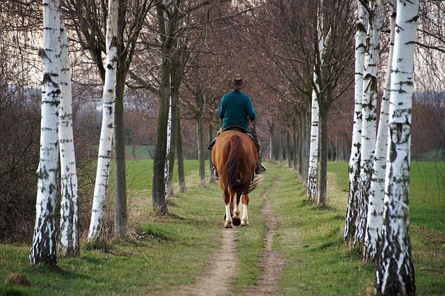 člověk na koni