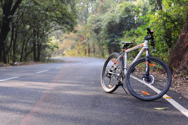 kolo u silnice